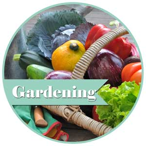 busy-mom-center-gardening