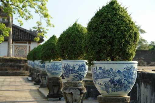 porclean pots