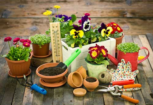 Container Gardening - gardening tools for container gardening