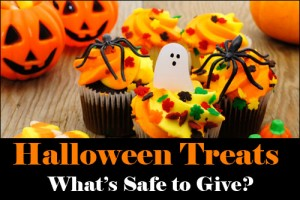 Halloween Treats – What's Safe to Give?